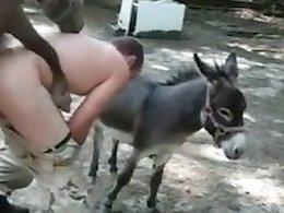 Animal Sex Mania