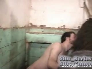 Man enjoys the horse's cock in both his mouth and ass