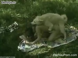 White dog fucks a woman from behind in the woods