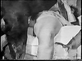 Artistic black and white dog sex video with a BBW