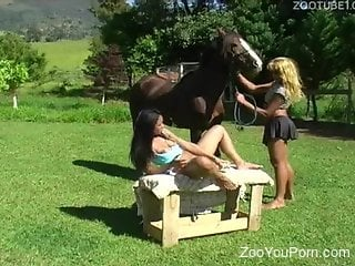 Latina with an oozing pussy gets fucked by a horse