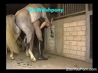 Crossdressing dude gets his asshole fucked by a stallion