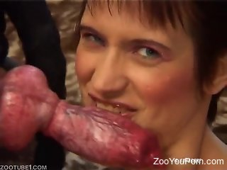 Mature European babes getting dicked by dogs