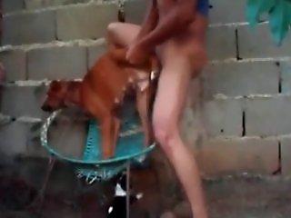 Animal Porn Site