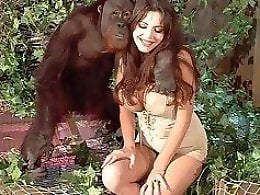 Sex With Monkey