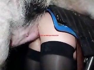 Zoo Sex Tube